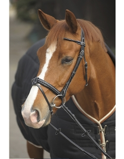 Bridle Point Sellier - Black